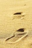 Sabbia della spiaggia vari Fotografia Stock Libera da Diritti