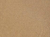 Sabbia di corallo bianca e chiare acque Astrazione stock footage
