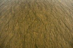 Sabbia di lavabile Fotografie Stock