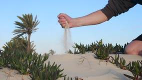 Sabbia di presa e di versamento della mano maschio dalla mano nel fondo dei cactus e del deserto archivi video