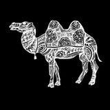 Sabbia di viaggio della natura animale dell'illustrazione del deserto di vettore del cammello dell'Egitto royalty illustrazione gratis