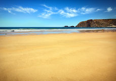 Sabbia dorata Fotografia Stock
