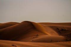 Sabbia dorata Immagini Stock Libere da Diritti