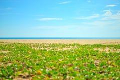 Sabbia e cielo blu della spiaggia Immagini Stock