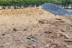 Sabbia e pietra sulla terra con il fondo dell'albero Immagini Stock