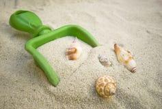 Sabbia e Seashells fotografia stock