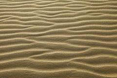Sabbia increspata Fotografie Stock Libere da Diritti