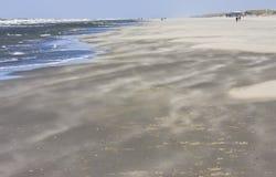 Sabbia mobile all'isola di Ameland, Paesi Bassi fotografia stock libera da diritti