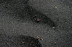 Sabbia nera Immagini Stock Libere da Diritti