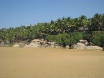 Sabbia, pietre e palme Fotografie Stock