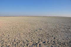 Sabbia, sale e savana - le pentole del sale di etosha in Namibia fotografia stock