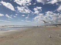 Sabbia senza fine Fotografia Stock