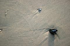 Sabbia sulla spiaggia di Ventnor Immagini Stock