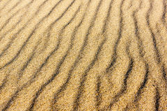 Sabbia sulle dune immagini stock libere da diritti