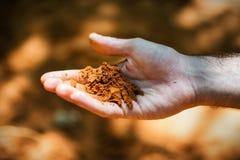 Sabbia in vostra mano Fotografia Stock
