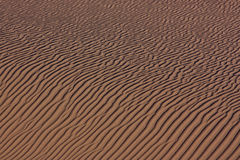 Sabbie del deserto Fotografia Stock