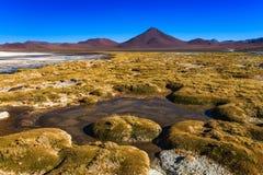 Sabbioso ed inghiai la strada del deserto attraverso la parte a distanza di Altiplano del sud, Bolivia Immagine Stock