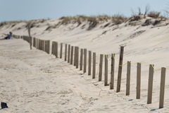Sandy beach of Ocean City Maryland Stock Images