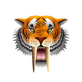 Saber-toothed tiger face  on white vector Stock Photos