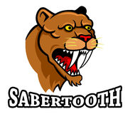 Sabertooth. Vector illustration oh sabertooth head Stock Photography