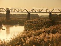Sabi Brücke lizenzfreie stockbilder