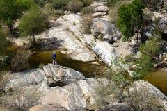 Sabino Canyon Royaltyfri Bild
