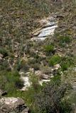 Sabino Canyon foto de archivo