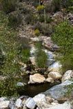 Sabino Canyon fotografía de archivo