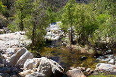 Sabino Canyon Photo stock