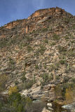 Sabino Canyon di Tucson Immagine Stock