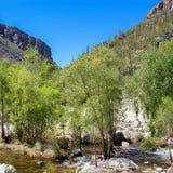 Sabino Canyon Royalty Free Stock Photos
