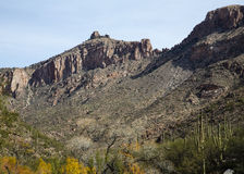 Sabino Canyon Stock Photos
