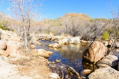 Sabino Creek lined with rocks during fall season. The water flowing through the rocks and trees in Sabino Creek in Tucon, Arizona Stock Images