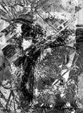 Sabio 004 de Grunge Imágenes de archivo libres de regalías