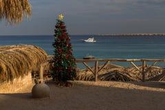 Sable blanc, palmiers et mer et arbre de Noël bleus Photo stock