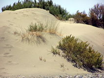 sable chaud en Chypre Image stock