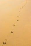 sable d'empreintes de pas Photo stock