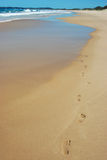 sable d'empreintes de pas Photos stock