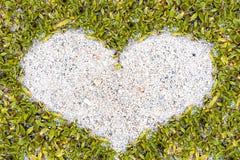 Sable de cadre d'herbe verte dans la forme de coeur Photos stock