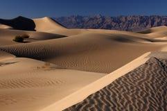 Sable de désert Image libre de droits