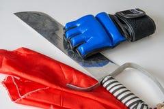 Sable de Kungfu y guante de boxeo fotografía de archivo libre de regalías