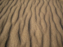 Sable de mer photo libre de droits