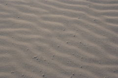 Sable de plage Photographie stock libre de droits