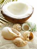 Sable de plage et coquillages, vacances de concept images stock