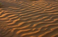Sable-dune Photos libres de droits