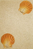 Sable et coquilles Image stock