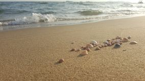 Sable et coquilles photo stock