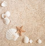 Sable et coquilles Photographie stock