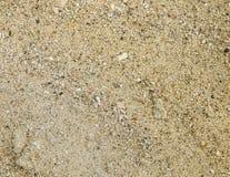 Sable jaune de plage avec les taches noires Photo libre de droits