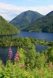 Sable lakes. Royalty Free Stock Photo